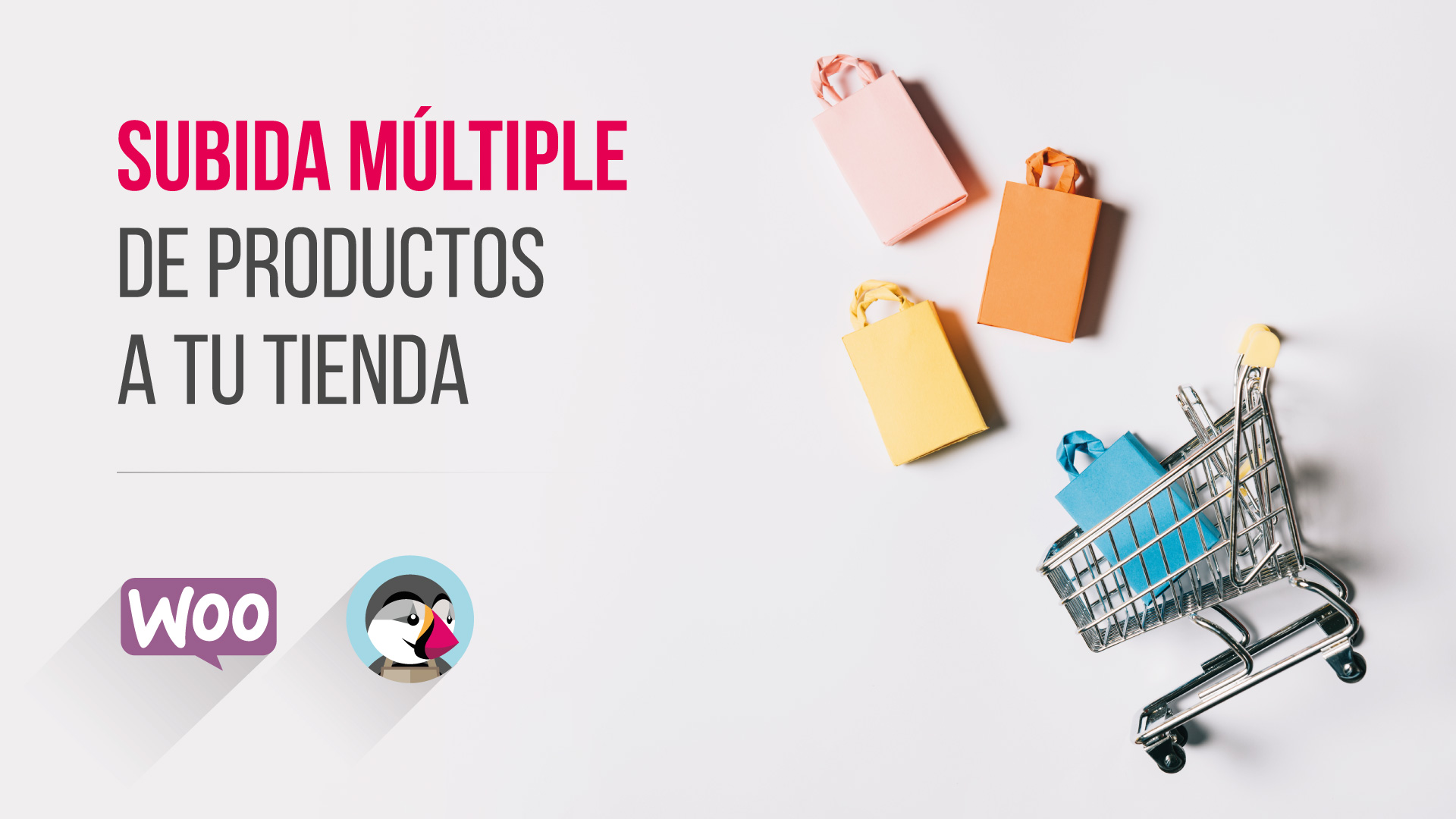 Subida múltiple de productos a tu tienda online