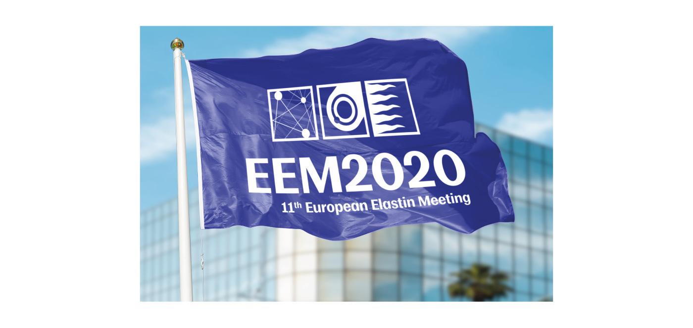 diseno-logotipo-elastin-european-meeting-valladolid-7